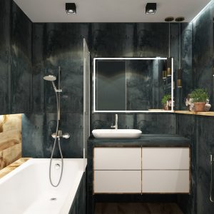 Modern Bathroom with Dark Colors