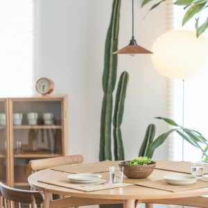 Bohemian Dining Room with Cactus
